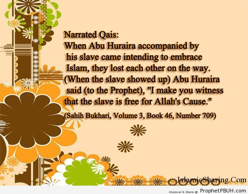 sahih bukhari volume 3 book 46 number 709