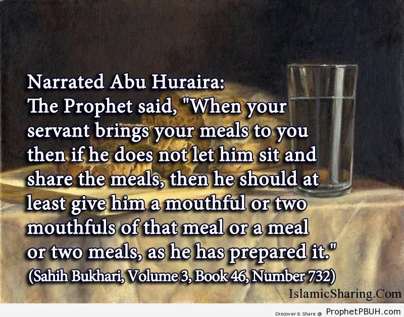 sahih bukhari volume 3 book 46 number 732
