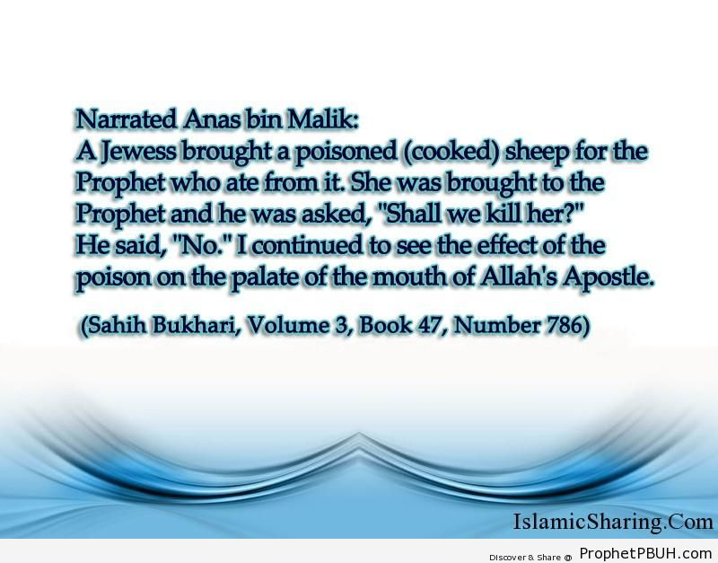 sahih bukhari volume 3 book 47 number 786