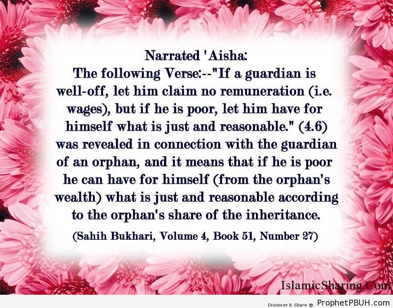 sahih bukhari volume 4 book 51 number 27