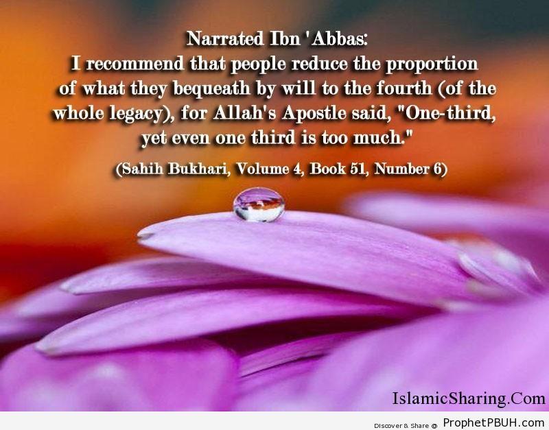 sahih bukhari volume 4 book 51 number 6
