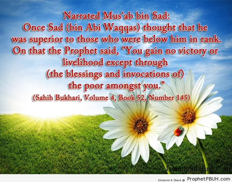 sahih bukhari volume 4 book 52 number 145