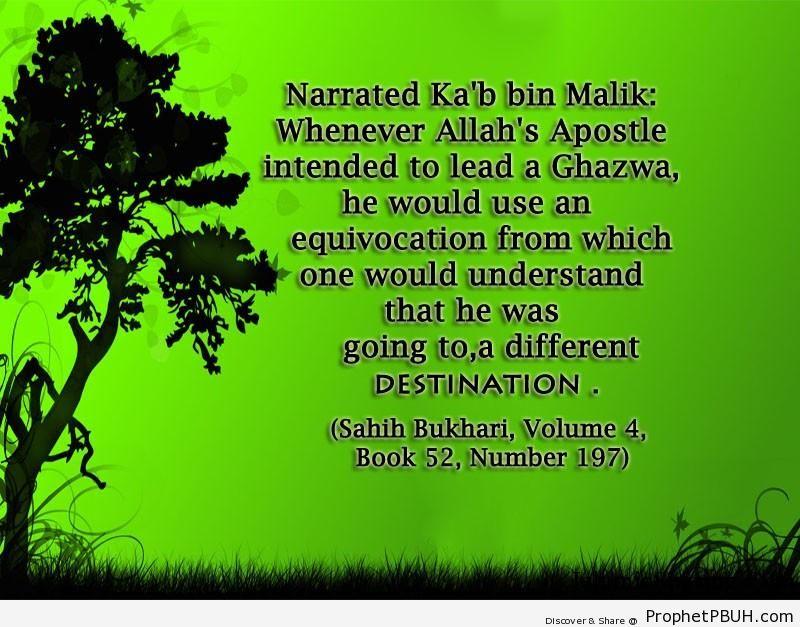 sahih bukhari volume 4 book 52 number 197