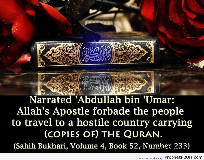 sahih bukhari volume 4 book 52 number 233