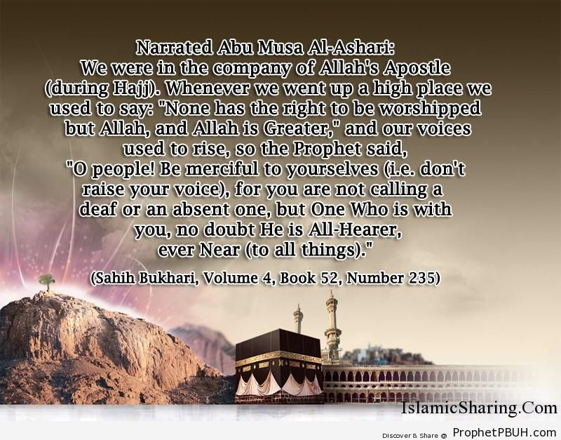 sahih bukhari volume 4 book 52 number 235