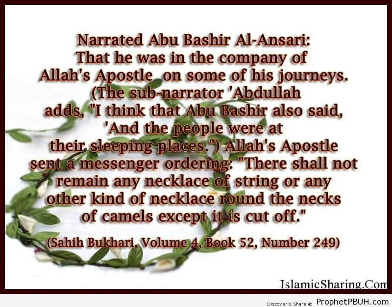 sahih bukhari volume 4 book 52 number 249