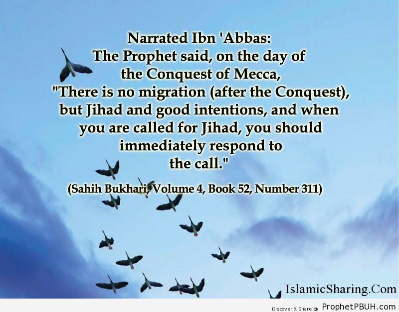 sahih bukhari volume 4 book 52 number 311
