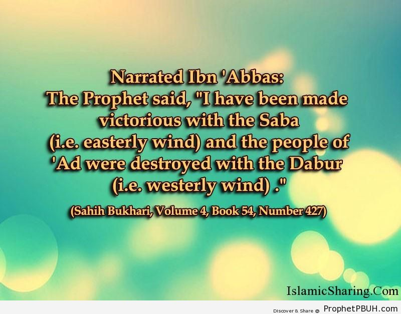 sahih bukhari volume 4 book 54 number 427