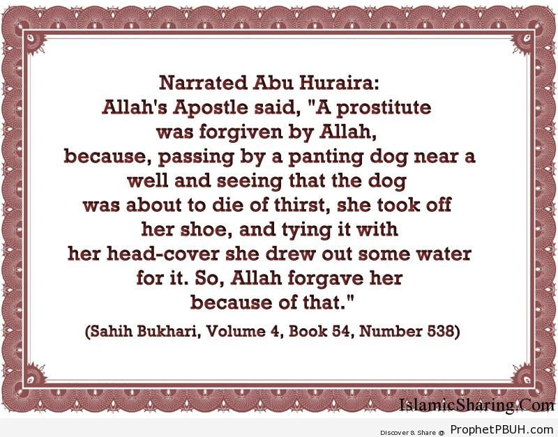 sahih bukhari volume 4 book 54 number 538