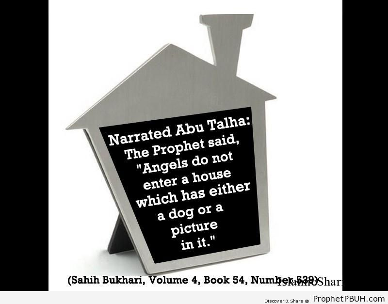 sahih bukhari volume 4 book 54 number 539