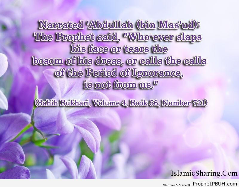 sahih bukhari volume 4 book 56 number 721