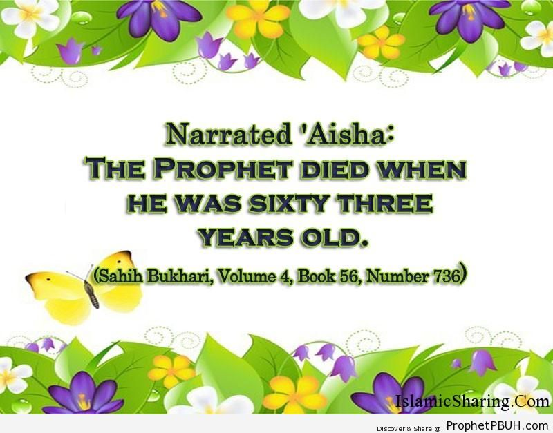 sahih bukhari volume 4 book 56 number 736