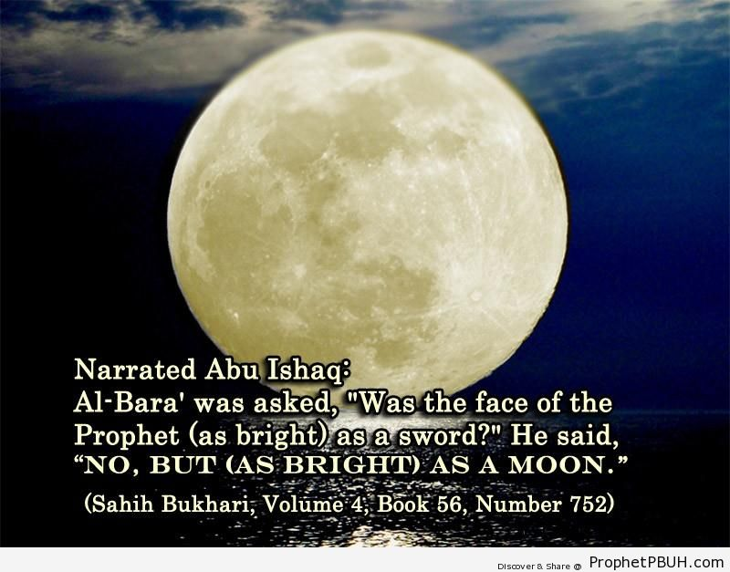 sahih bukhari volume 4 book 56 number 752