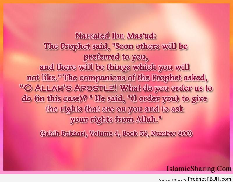 sahih bukhari volume 4 book 56 number 800