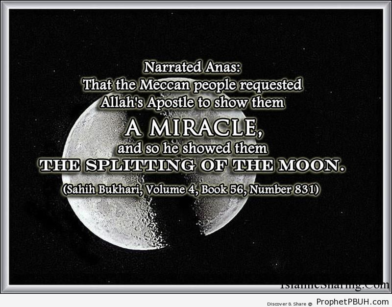 sahih bukhari volume 4 book 56 number 831