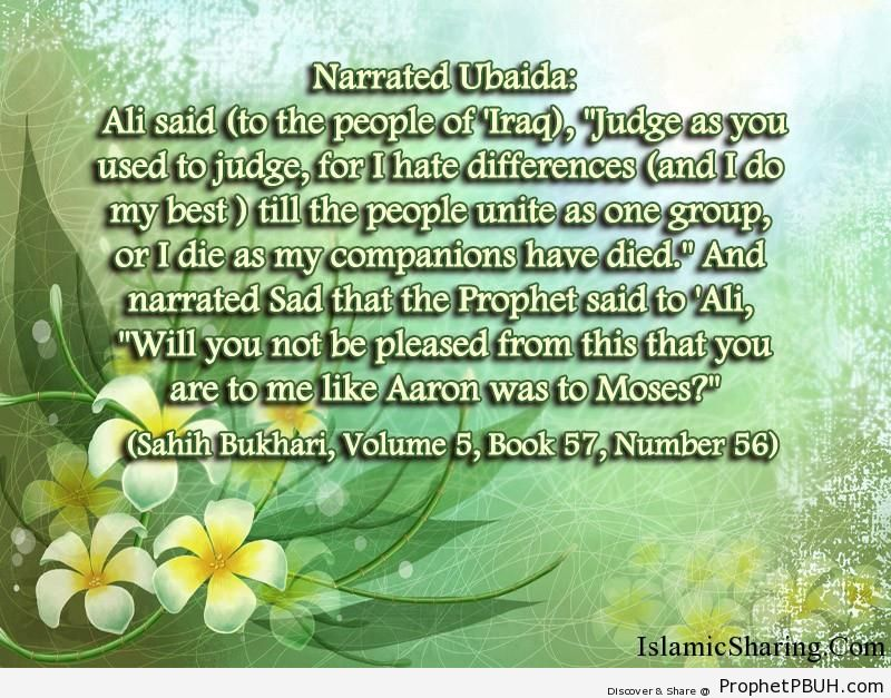 sahih bukhari volume 5 book 57 number 56