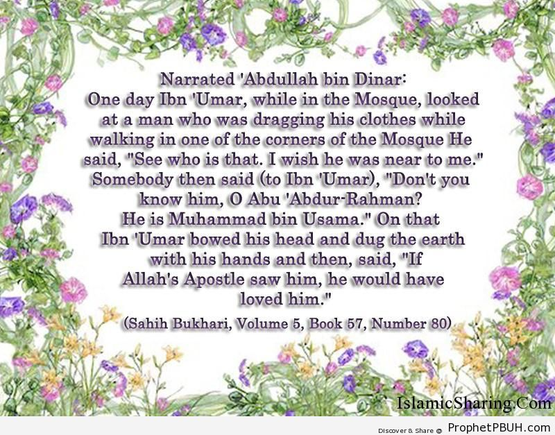 sahih bukhari volume 5 book 57 number 80