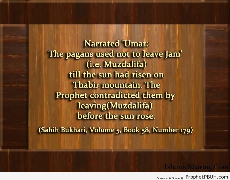 sahih bukhari volume 5 book 58 number 179