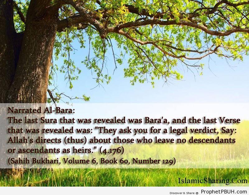 sahih bukhari volume 6 book 60 number 129