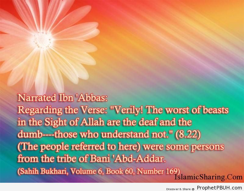 sahih bukhari volume 6 book 60 number 169