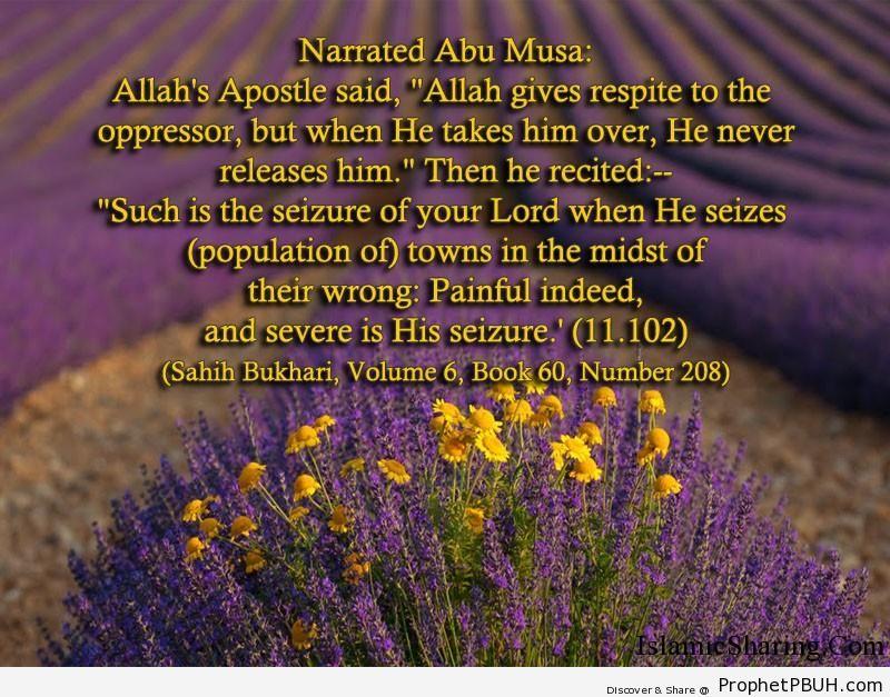 sahih bukhari volume 6 book 60 number 208