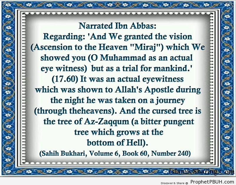 sahih bukhari volume 6 book 60 number 240
