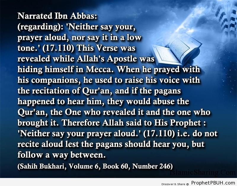 sahih bukhari volume 6 book 60 number 246