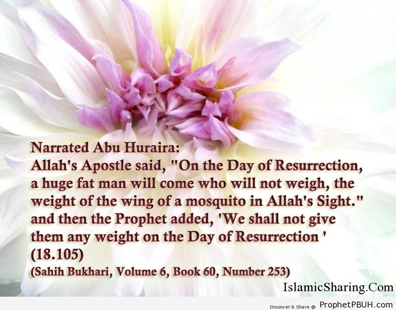 sahih bukhari volume 6 book 60 number 253