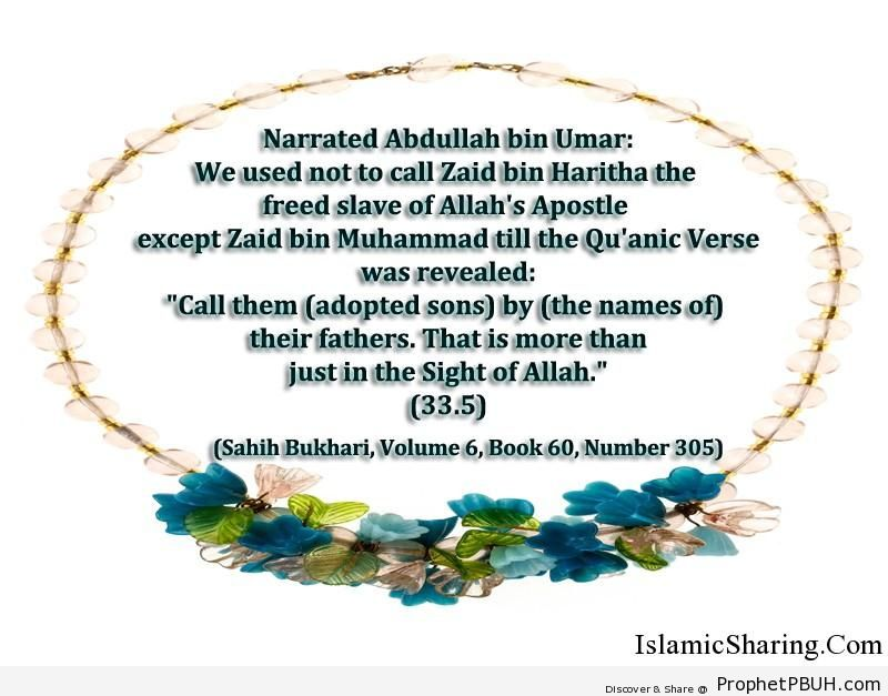 sahih bukhari volume 6 book 60 number 305