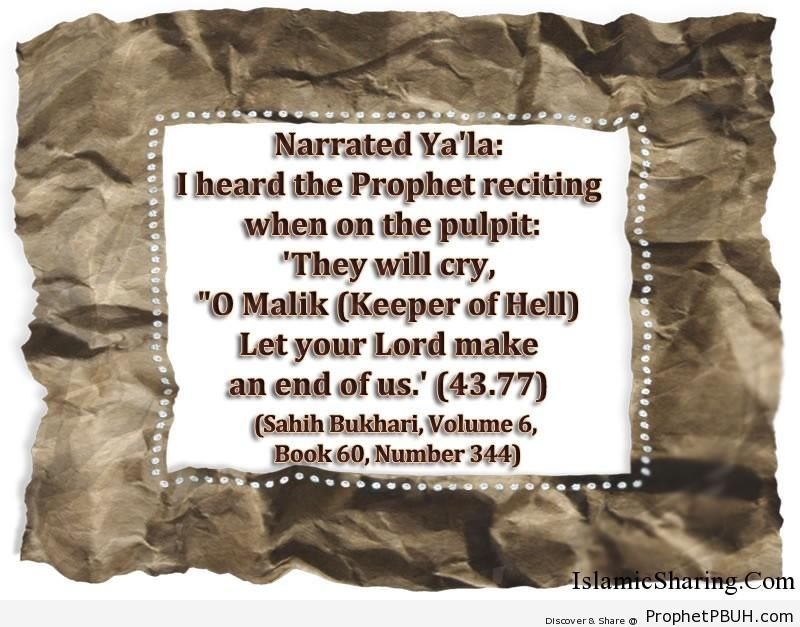 sahih bukhari volume 6 book 60 number 344