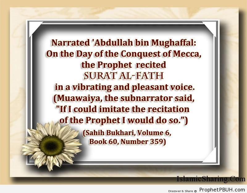sahih bukhari volume 6 book 60 number 359