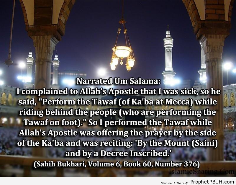 sahih bukhari volume 6 book 60 number 376