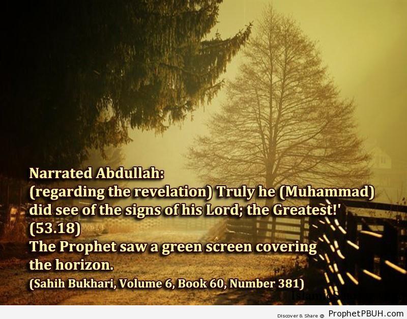 sahih bukhari volume 6 book 60 number 381