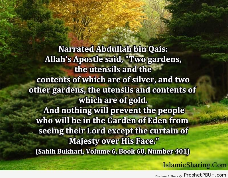 sahih bukhari volume 6 book 60 number 401