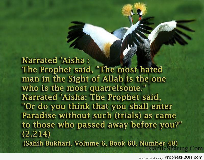 sahih bukhari volume 6 book 60 number 48