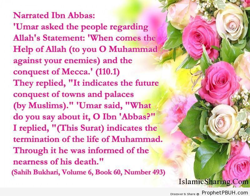 sahih bukhari volume 6 book 60 number 493