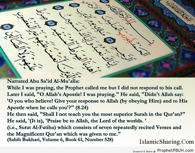 sahih bukhari volume 6 book 61 number 528
