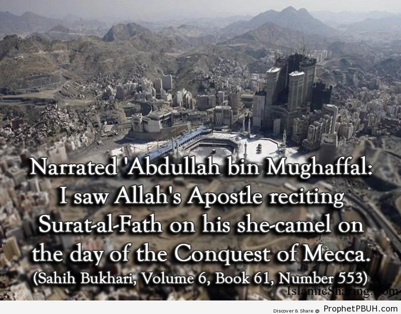 sahih bukhari volume 6 book 61 number 553