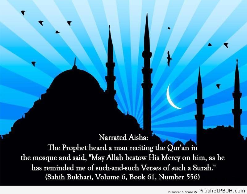 sahih bukhari volume 6 book 61 number 556