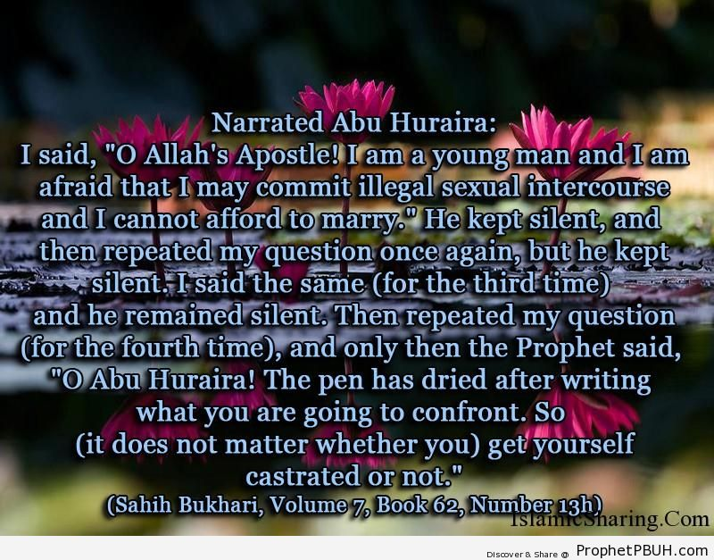 sahih bukhari volume 7 book 62 number 13h