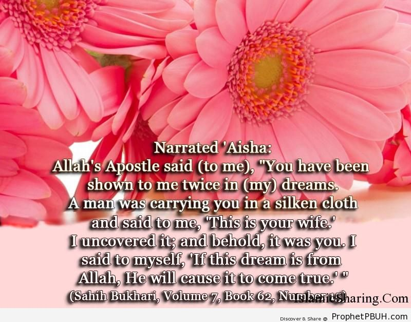 sahih bukhari volume 7 book 62 number 15