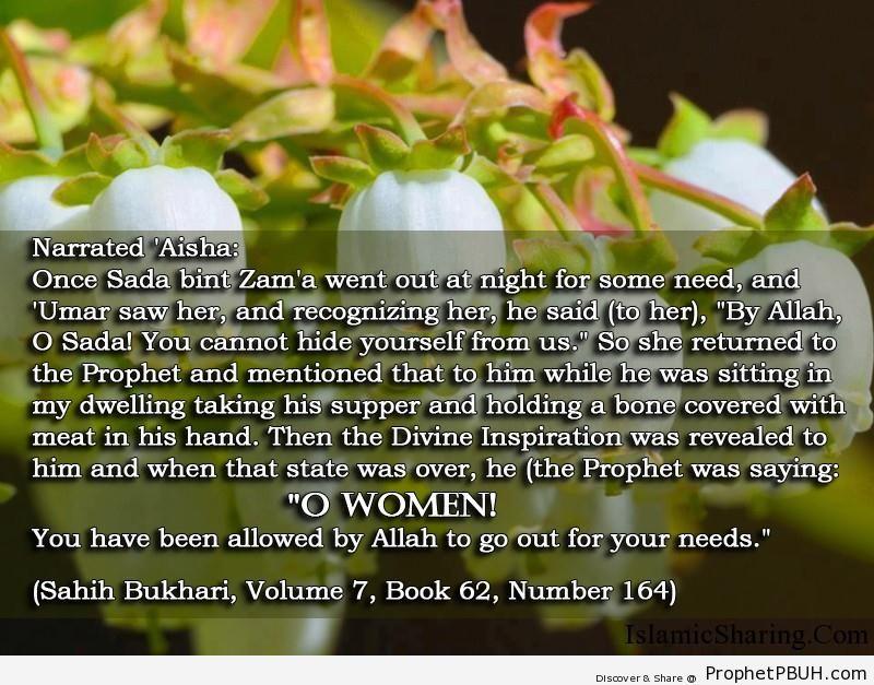 sahih bukhari volume 7 book 62 number 164