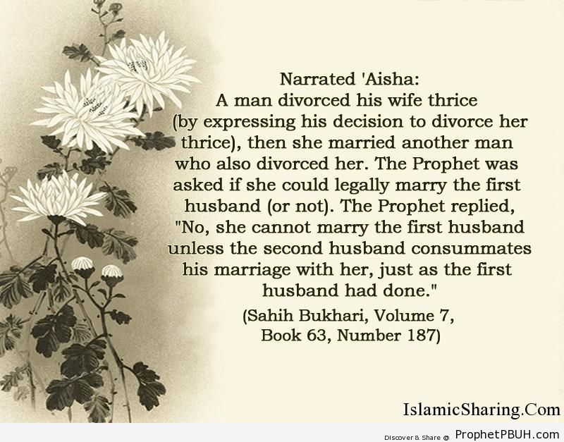 sahih bukhari volume 7 book 63 number 187