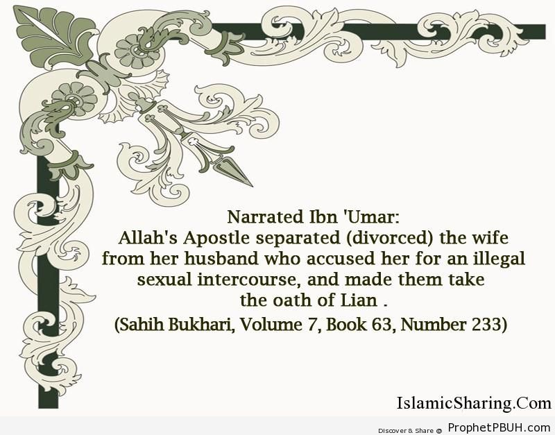 sahih bukhari volume 7 book 63 number 233