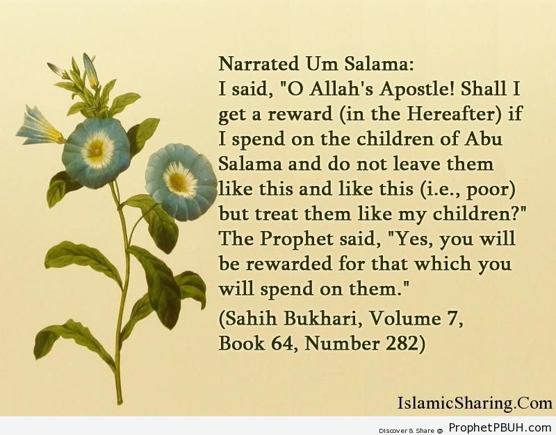 sahih bukhari volume 7 book 64 number 282