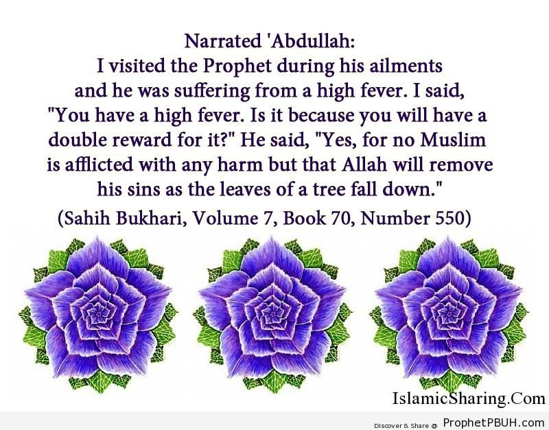 sahih bukhari volume 7 book 70 number 550
