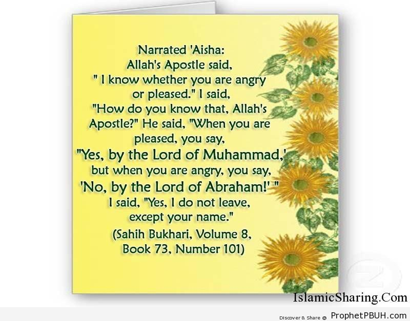 sahih bukhari volume 8 book 73 number 101