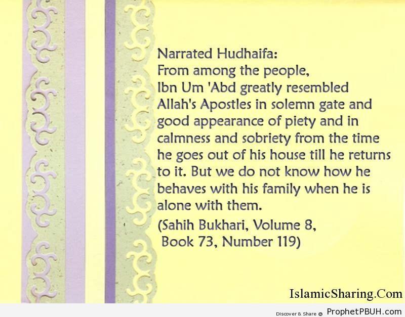 sahih bukhari volume 8 book 73 number 119