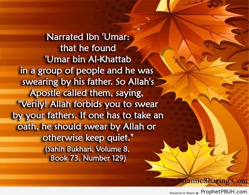 sahih bukhari volume 8 book 73 number 129