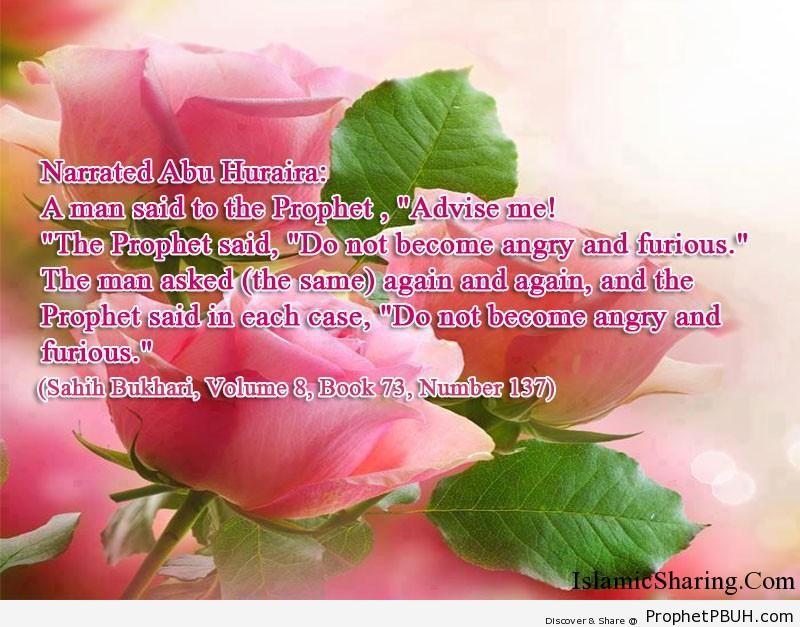 sahih bukhari volume 8 book 73 number 137